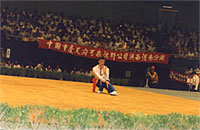 Shifu Alan Tinnion demonstrating the art of Wuji before a mass audience at the China Games